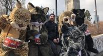 Aktywiści domagają  się utworzenia Turnickiego Parku Narodowego. Tym razem pojawią się w Rzeszowie - Aktualności Rzeszów