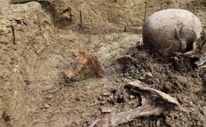Na budowie obwodnicy Stalowej Woli i Niska znaleziono szczątki ludzkie