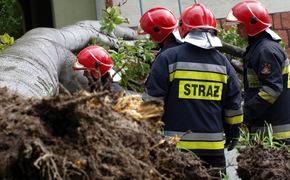 Ponad 240 interwencji strażaków i dwie osoby ranne podczas weekendowej wichury - Aktualności Podkarpacie