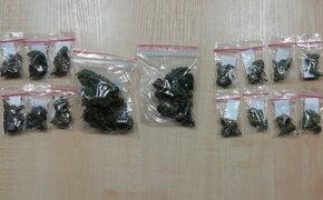 Zatrzymano dwójkę mężczyzn za posiadanie narkotyków. Policjanci zabezpieczyli 27 gramów marihuany - Aktualności Podkarpacie