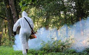 Ciąg dalszy walki z komarami i kleszczami w Rzeszowie - Aktualności Rzeszów