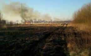   Surowe kary za wypalanie traw