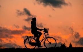 """Holenderskie miasto przykładem dla Rzeszowa w obszarze """"polityki rowerowej"""""""