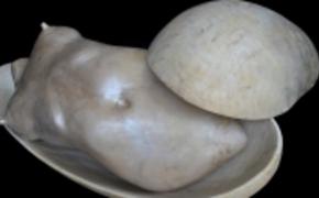 | Rzeźby Pawła Chlebka w Muzeum Okręgowym