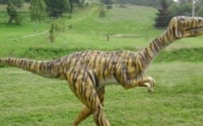 | Ukradł i uszkodził dinozaura