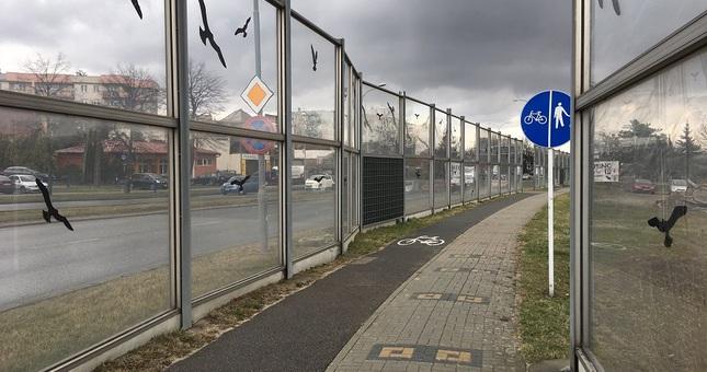 Ekrany dźwiękochłonne na ul. Lwowskiej zostaną zastąpione zielenią? - Aktualności Rzeszów