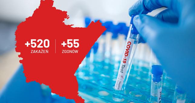 520 nowych zakażeń koronawirusem na Podkarpaciu. Zmarło 55 osób [16.04.2021] - Aktualności Podkarpacie