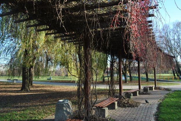 Aktualności Rzeszów | Miasto zainwestuje w ławki