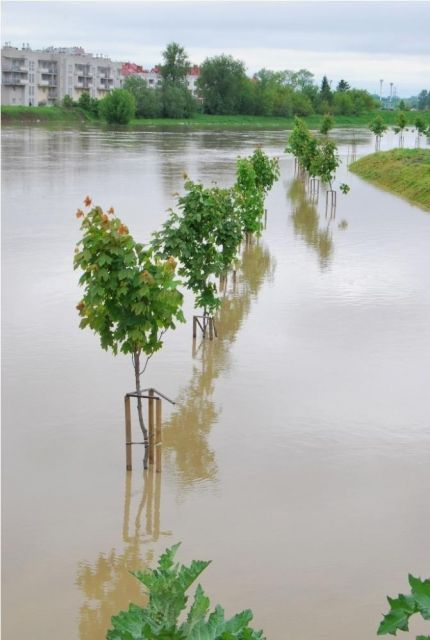 Aktualności Podkarpacie | Pierwsza pomoc dla poszkodowanych w wyniku powodzi