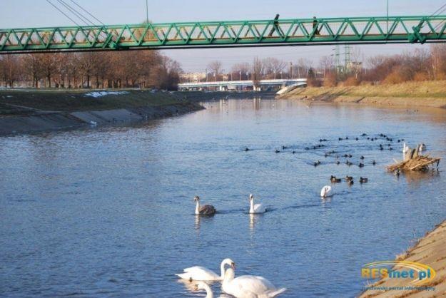 Aktualności Rzeszów | Atrakcje Rzeszowa: Bulwary