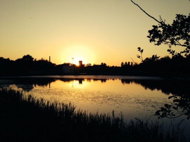 Aktualności Rzeszów | Letnia Czytelnia nad Wisłokiem