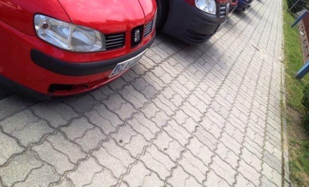 Aktualności Rzeszów | Zwłoki na rzeszowskim chodniku