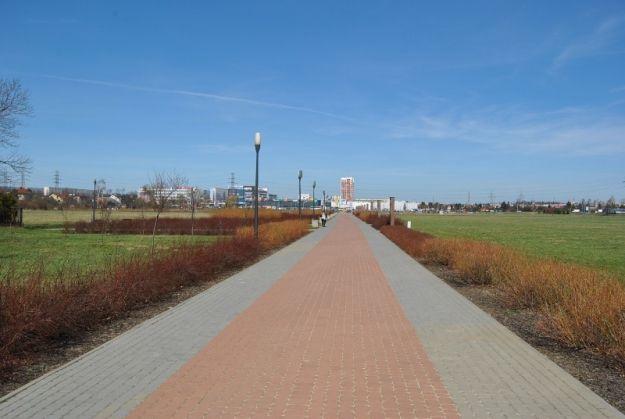 Aktualności Rzeszów | Fontanna w Parku Papieskim najbardziej wyczekiwana wśród mieszkańców