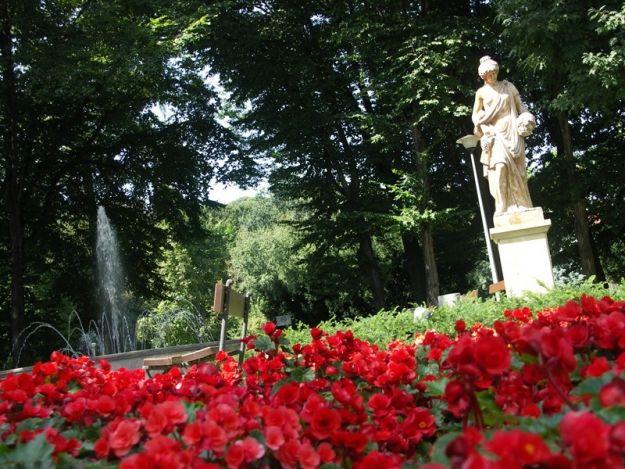 Aktualności Rzeszów | Miasto zyska kolejny park?