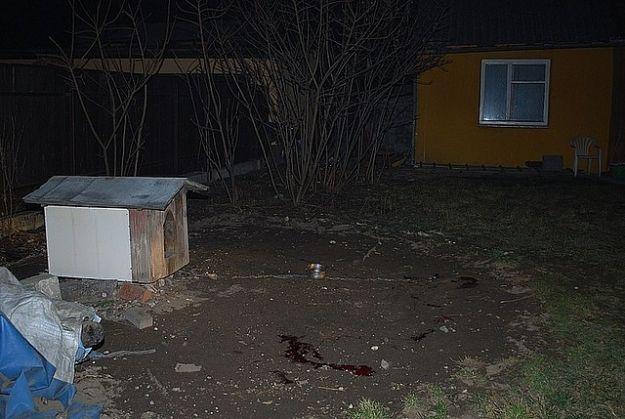 Aktualności Podkarpacie | Maczetą bestialsko zabili psa