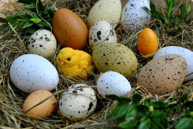 Aktualności Rzeszów | Jarmarki Wielkanocne w Rzeszowie