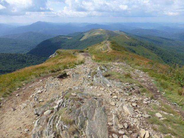 Aktualności Podkarpacie | Pobiegną 13 km dla Antosia z Rzeszowa