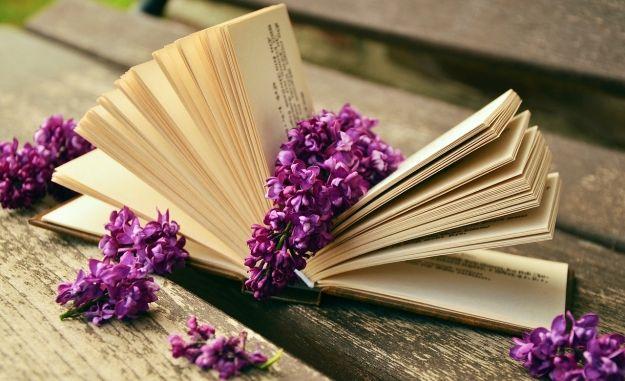 Aktualności Rzeszów | Mieszkańcy niezainteresowani Bibliomanią? Mogła być wielka impreza kulturalna w centrum Rzeszowa