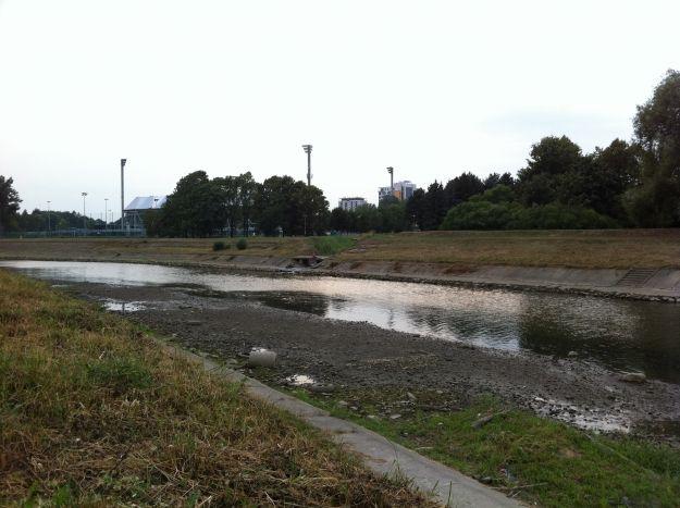 Aktualności Rzeszów | (FOTO) Niski poziom wody w Wisłoku. Przejściowe opady nic nie zmienią