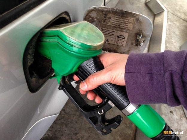 Aktualności Rzeszów | Ceny paliwa poszły w dół. Zobacz gdzie najtaniej zatankujesz w Rzeszowie