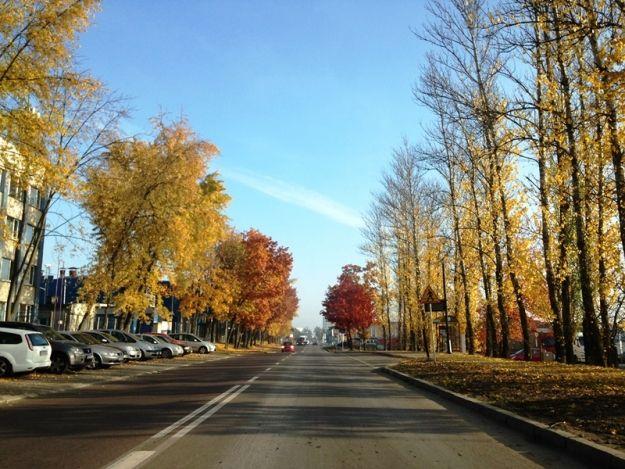 Aktualności Rzeszów | Wybudują nową drogę, która połączy dwie rzeszowskie ulice