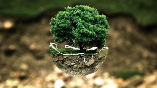 Aktualności Rzeszów | Przemaszerują ulicami Rzeszowa na rzecz ratowania planety