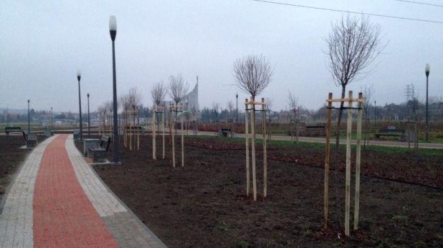 Aktualności Rzeszów | Park Papieski wreszcie jak prawdziwy park. Posadzono kwiaty i drzewa