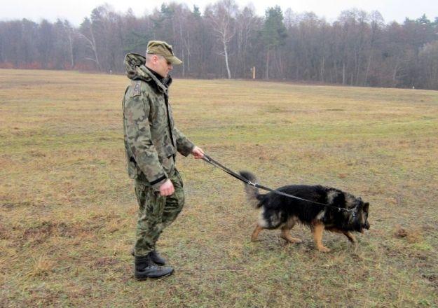 Aktualności Podkarpacie | Pies tropiący odnalazł zaginionego 85-latka