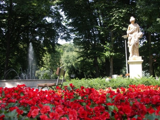 Aktualności Rzeszów | Prawie 200 tys. na rewitalizację rzeszowskiej zieleni