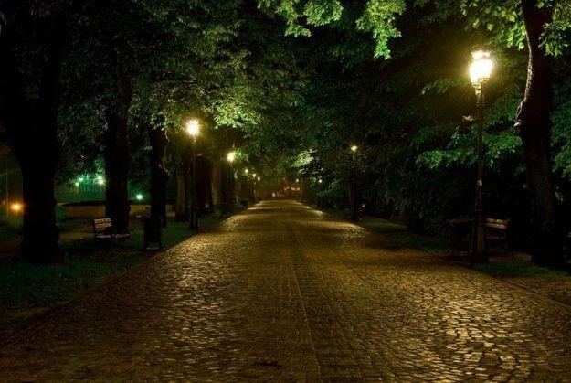 Aktualności Rzeszów | Inwestycja w miejską zieleń. Które tereny zostaną zagospodarowane?