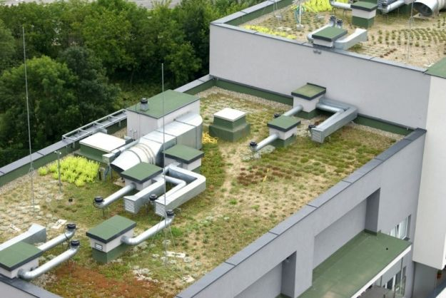 Aktualności Rzeszów | Rzeszów inwestuje w zieleń na dachach budynków. Jest atrakcyjniej i zdrowiej