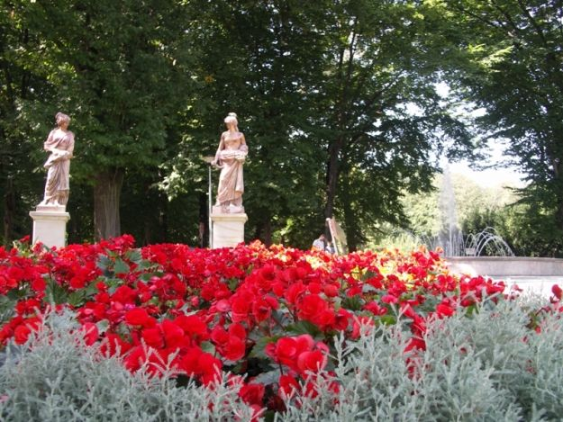 Aktualności Rzeszów | Rzeszów  w plebiscycie na najpiękniej ukwiecone miasto w Polsce. Można głosować