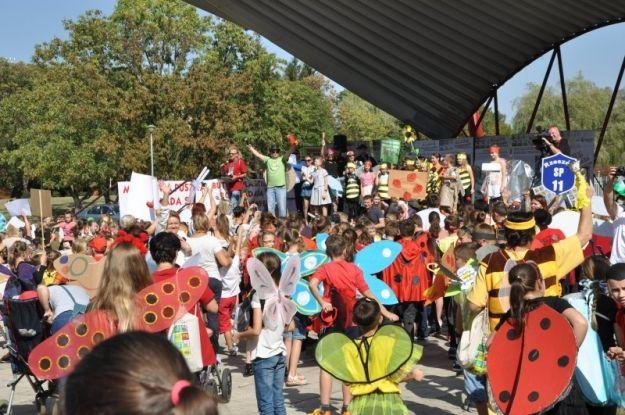 Aktualności Rzeszów | W piątek na bulwarach Drugi Rzeszowski Zlot Owadów. Liczne atrakcje dla najmłodszych