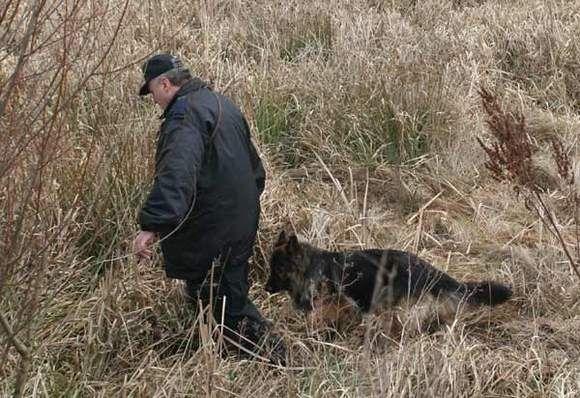 Aktualności Podkarpacie | Nocne poszukiwania policji. 76-latka zgubiła się w lesie