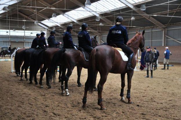 Aktualności Rzeszów | Pod Rzeszowem szkolą zespoły konne Policji