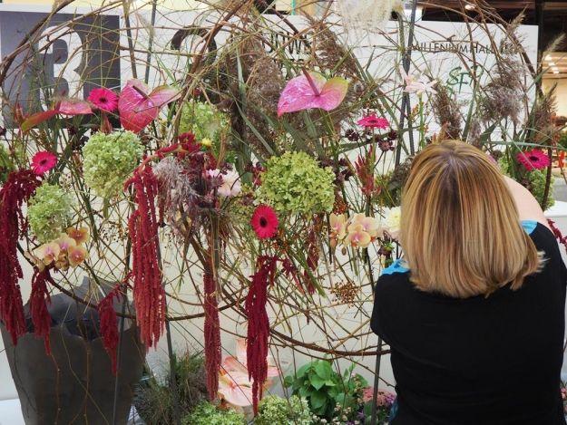 Aktualności Rzeszów | Niesamowite kompozycje z kwiatów do obejrzenia w Millenium Hall (ZDJĘCIA)