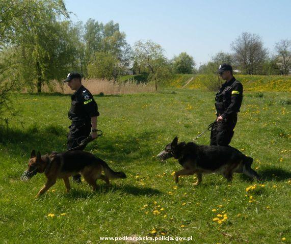 Aktualności Rzeszów | 26 policjantów poszukiwało zaginionego chłopca