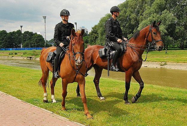 Aktualności Rzeszów | Konne patrole policyjne na rzeszowskich ulicach