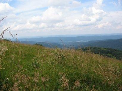 Aktualności Podkarpacie | Nowy szlak turystyczny w Bieszczadach