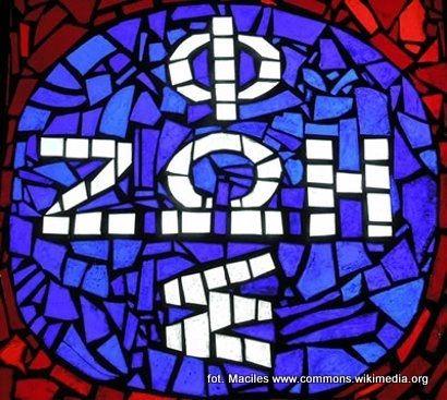 Aktualności Rzeszów | Oazy coraz popularniejsze