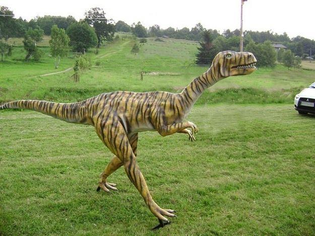 Aktualności Podkarpacie | Ukradł i uszkodził dinozaura