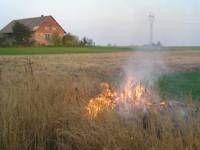Aktualności Podkarpacie   Zginął przy wypalaniu traw