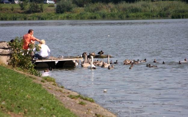 Aktualności Rzeszów | W górę zalewu katamarankiem