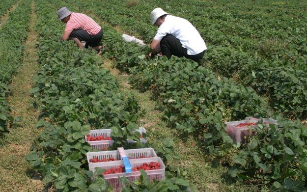 Aktualności Podkarpacie | Bezrobocie spada, ale pracy coraz mniej