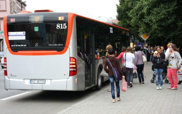 Aktualności Rzeszów | Psy pojadą za darmo autobusem MPK