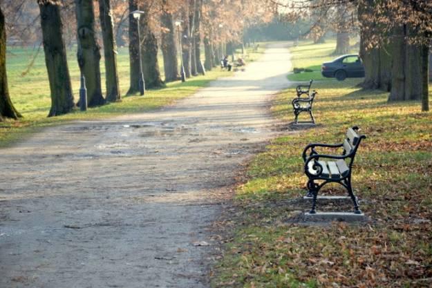 Aktualności Podkarpacie | Nowe ławki w parku w Łańcucie