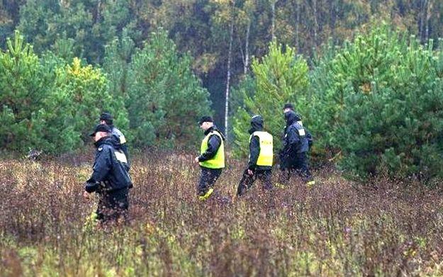 29 telewizorów w lesie  - Aktualności Podkarpacie
