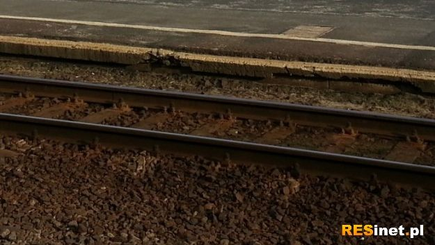 Przez Widełkę znów jadą pociągi  - Aktualności Podkarpacie