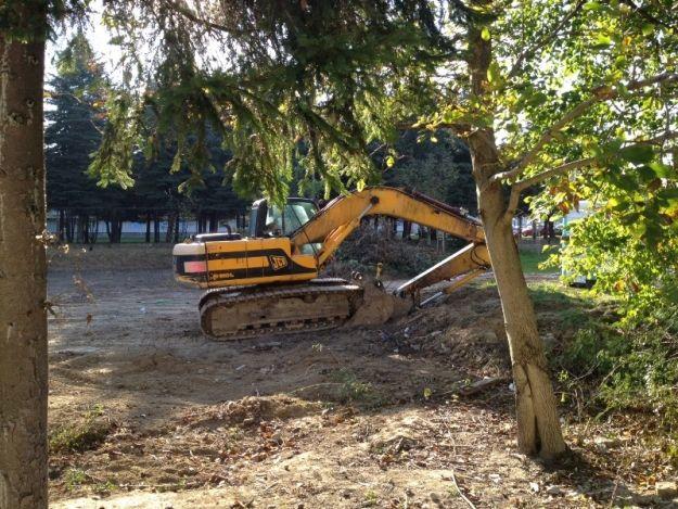 Nowe boisko trawiaste w Rzeszowie - Aktualności Rzeszów