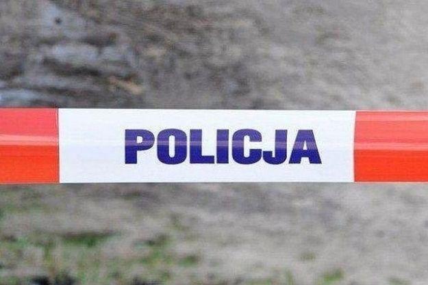 Policja nie wpuszcza na teren w okolicy Olszanicy! Trwają poszukiwania niedźwiedzia - Aktualności Podkarpacie